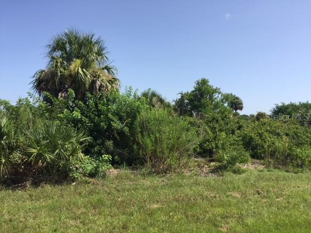 Vacant Land for sale at 11692 Willmington Blvd, Port Charlotte, FL 33981 - MLS Number is D6101904