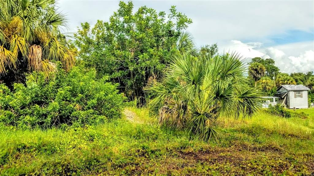 Interior of lot - Vacant Land for sale at 2298 Como St, Port Charlotte, FL 33948 - MLS Number is U8017900