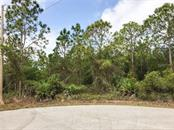 Vacant Land for sale at 25051 Kimberly Ct, Punta Gorda, FL 33955 - MLS Number is C7403893