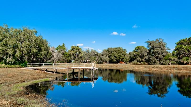 Single Family Home for sale at 27400 Gopher Hill Rd, Myakka City, FL 34251 - MLS Number is A4170229