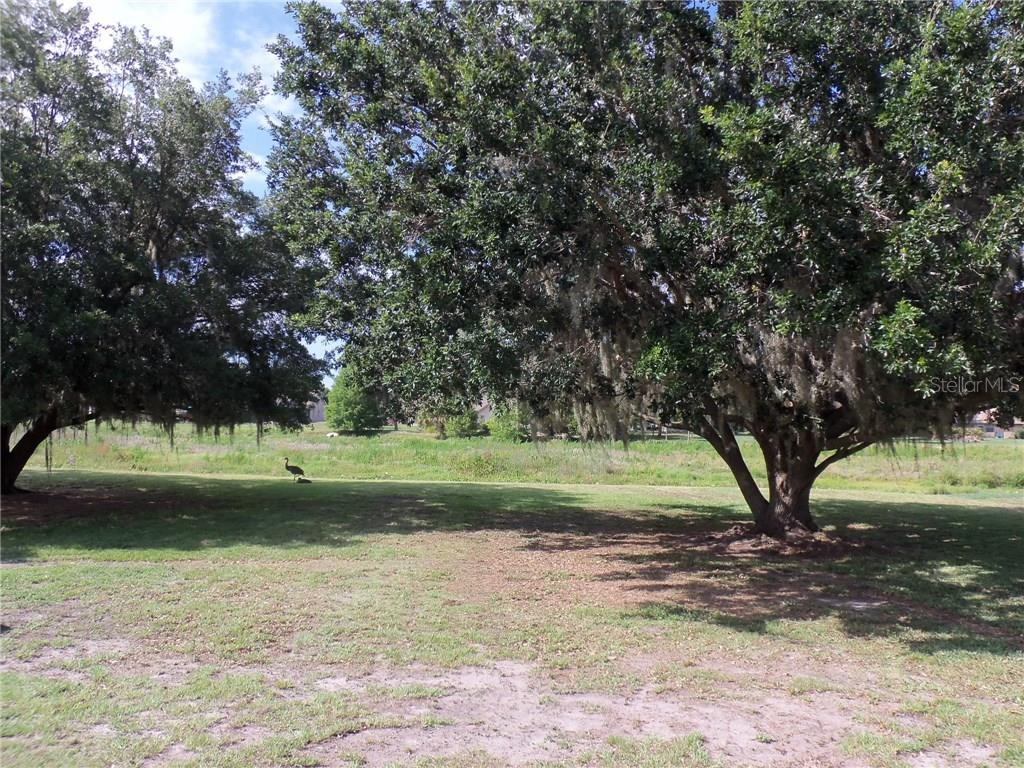 13511 3rd Ave E .....Nice large 1 acre yard with room for a future pool or vegetable garden - Single Family Home for sale at 13511 3rd Ave E, Bradenton, FL 34212 - MLS Number is A4187462
