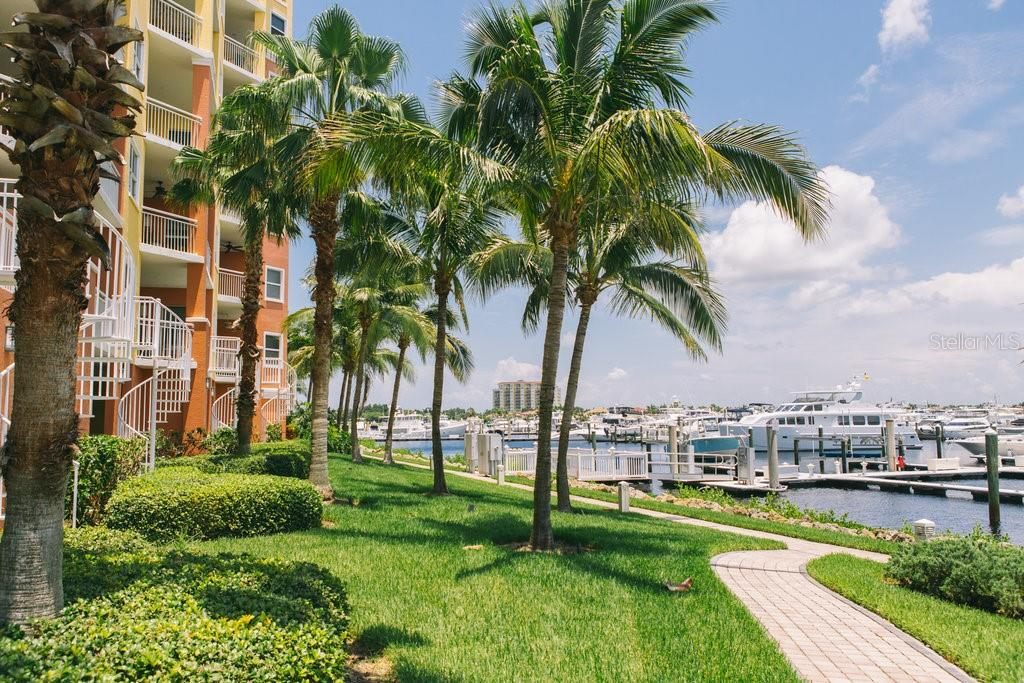 New Supplement - Condo for sale at 611 Riviera Dunes Way #703, Palmetto, FL 34221 - MLS Number is A4409206