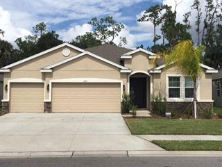 15317 Trinity Fall Way, Bradenton, FL 34212