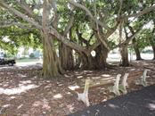 Venice Banyan Trees and seating area - Condo for sale at 1041 Capri Isles Blvd #121, Venice, FL 34292 - MLS Number is N6112042